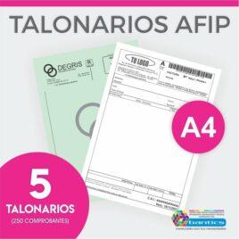 TALONARIO AFIP A4 FA FB FC RR X 05